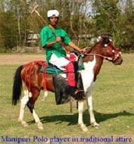 asiatische steppen pferderassen z.b. adaev