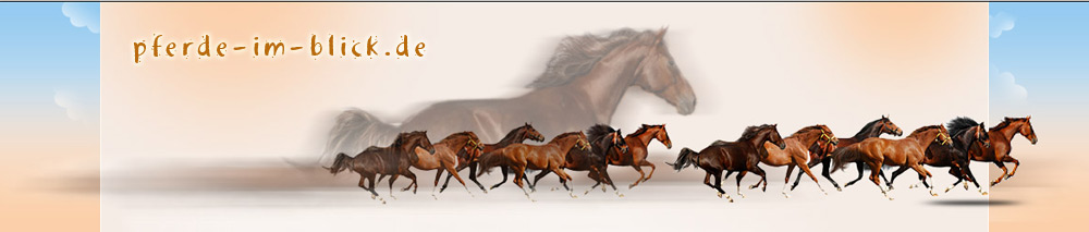 pferd alter bestimmen
